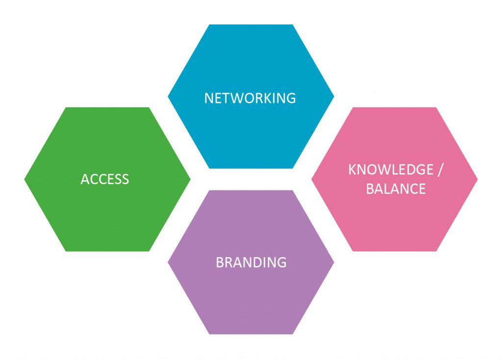 Slovenia conference World of Synergy access networking knowledge balance branding